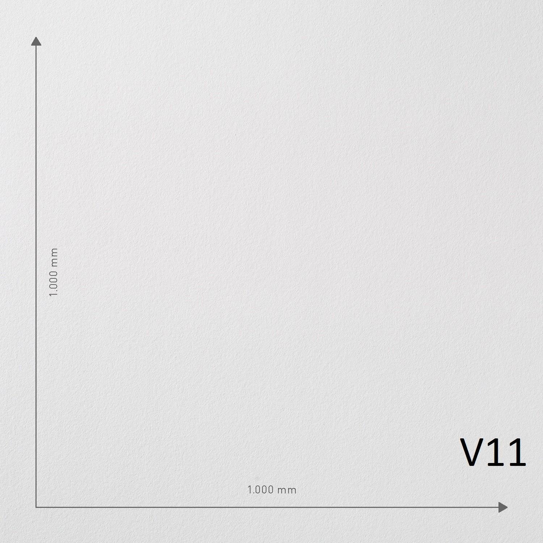V11 - rol. 50m2